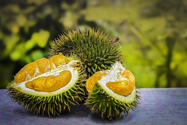 Durian : fruit exotique